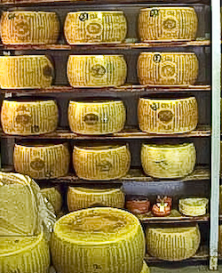 Wheels of Parmigiano